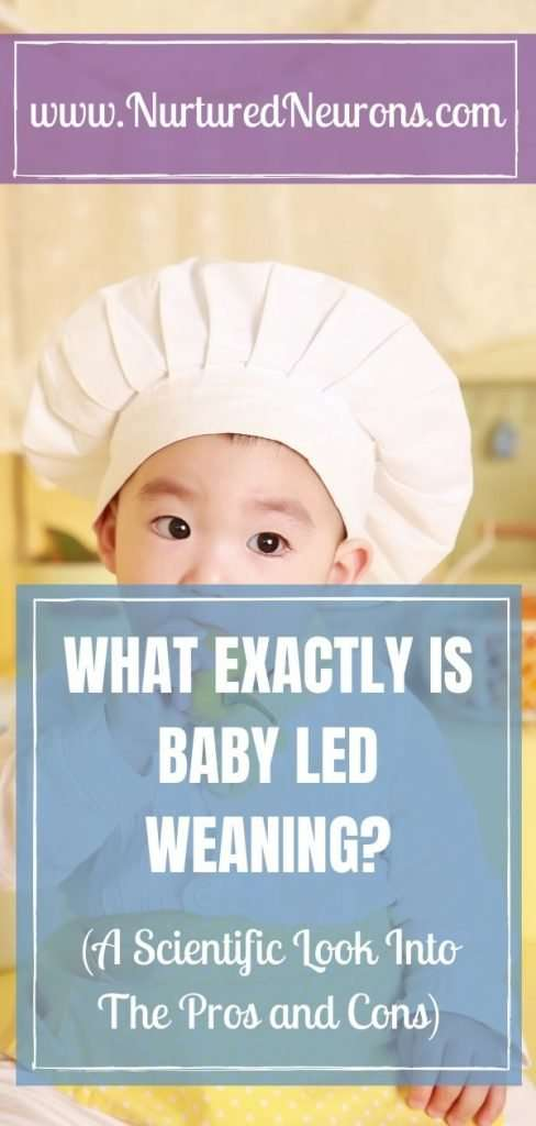 WHAT EXACTLY IS BABY LED WEANING? A scientific look into the pros and cons and advantages and disadvantages