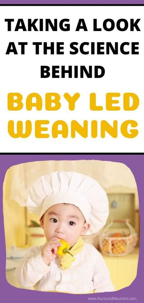 PROS AND CONS OF BABY LED WEANING