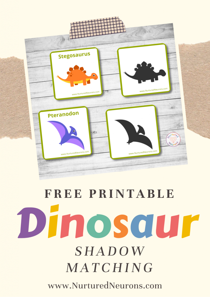 Dinosaur Shadow matching free printable game
