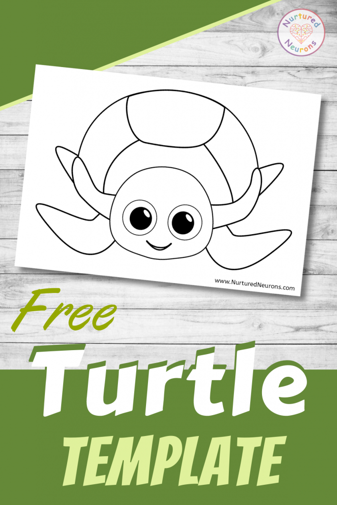 free printable Cute Turtle template for preschoolers and toddlers