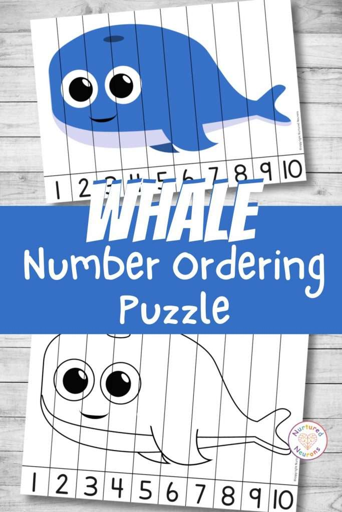 Whale number sequencing puzzle for preschool and kindergarten number ordering (1)