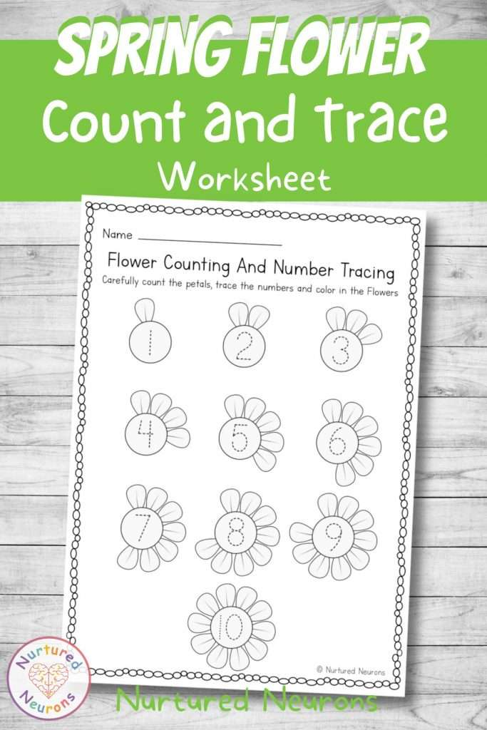 printable flower tracing and counting sheet for preschool and kindergarten pdf