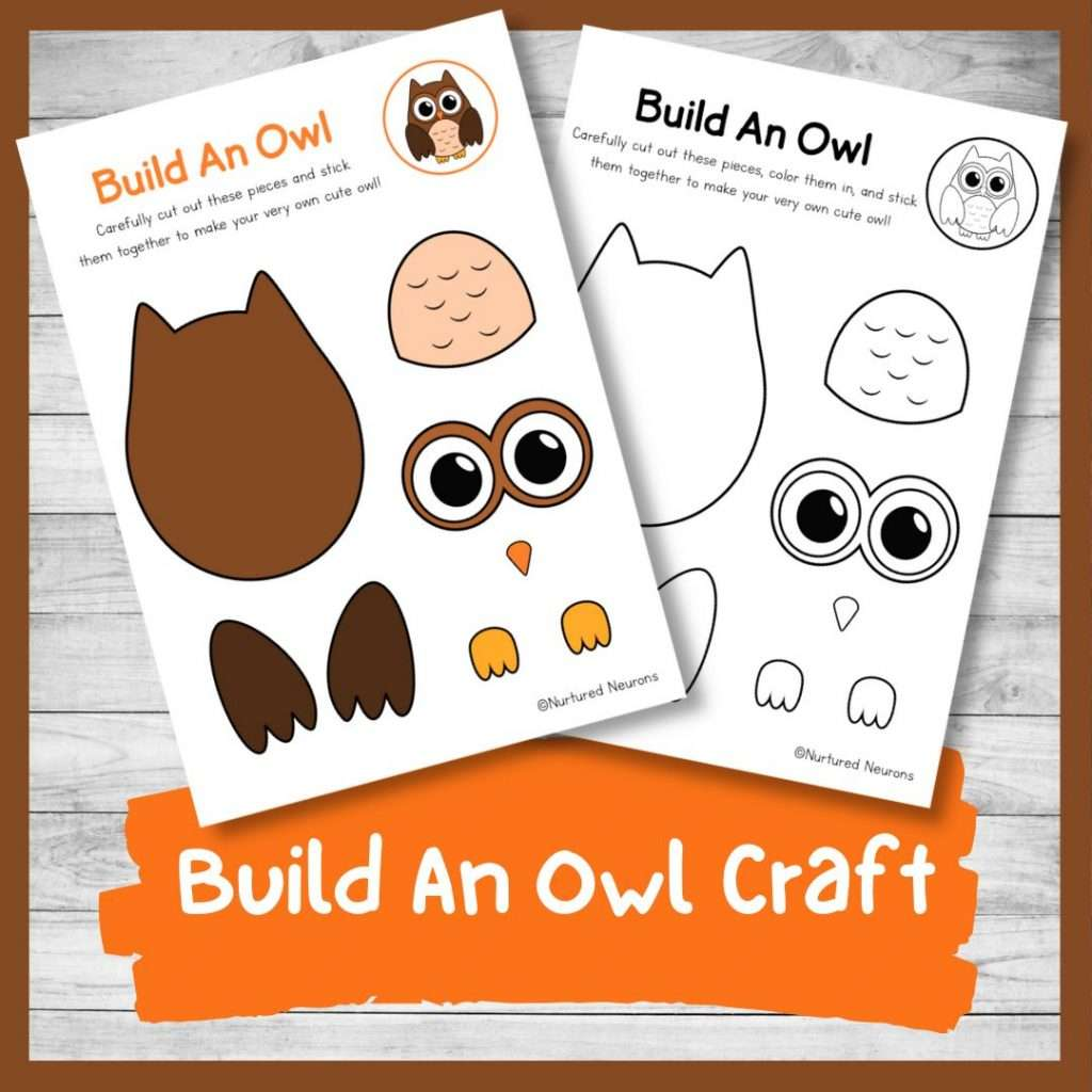 Build an owl craft - woodland activity for kids