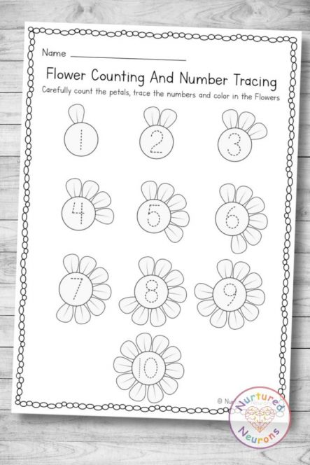Flower counting and Number tracing page (preschool and kindergarten download in pdf)